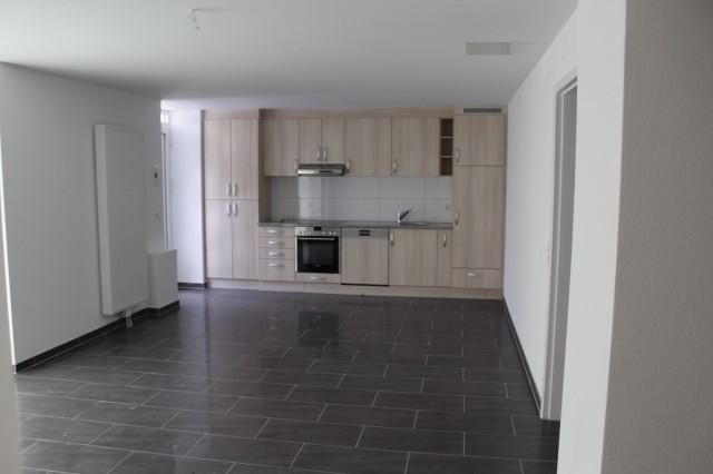 Nouvel appartement dans un immeuble rénové à louer (1er loye 15209188