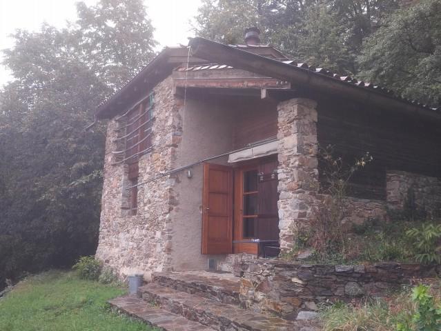 Hinreissendes Rustico (Möbliert) mitte Wald 17019012