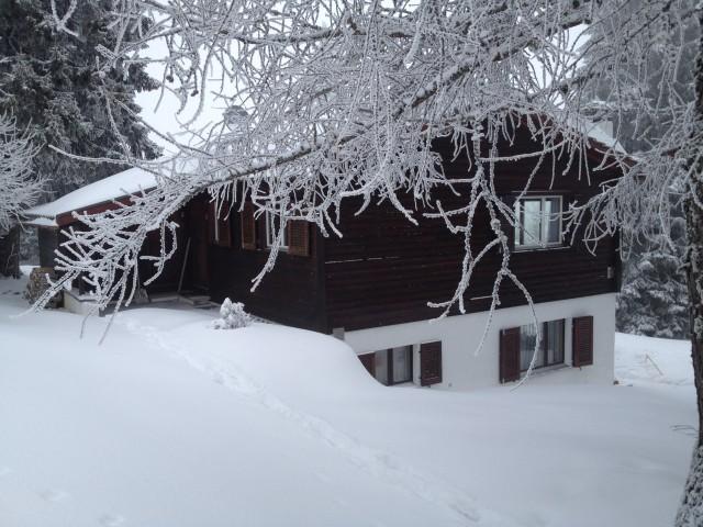 Chalet im Skigebiet Malix Brambrüesch (Churwalden / Graubünd 15267849