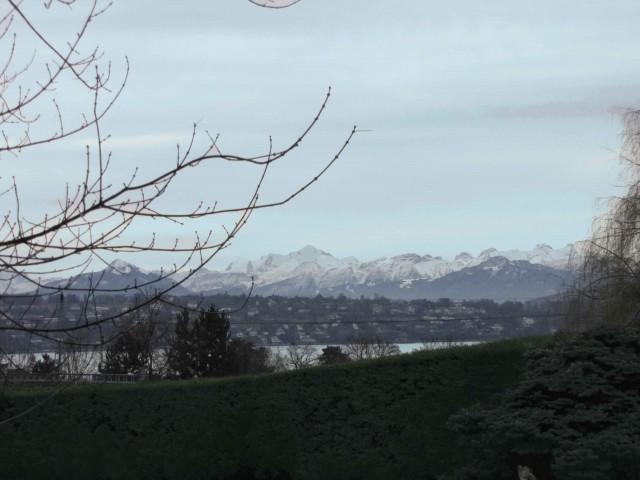 Freier Blick auf den Genfer See und den Mont Blanc, *Origina 14395206