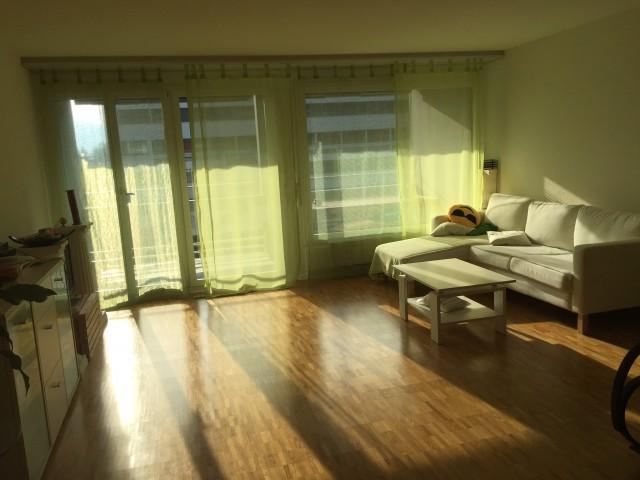 Sonnige 4.5-Zimmer-Wohnung 15039966
