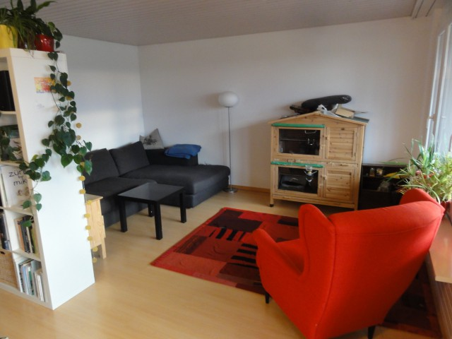 Sonnige 3 1/2 - Zimmer-Wohnung mit Seeblick 16350470
