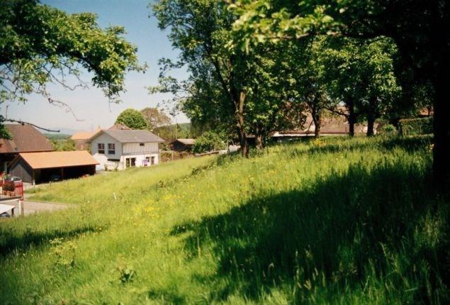 Bauland Hellsau 15312002