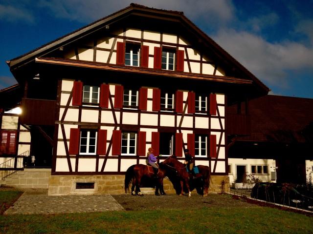 Wohntraum mit grossem Gartensitzplatz 15968993