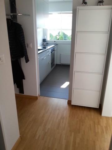 Neu renovierte 2 - Zimmerwohnung zu vermieten 16687414