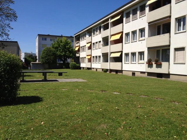 2-Zimmer-Wohnung in Murten 16007745