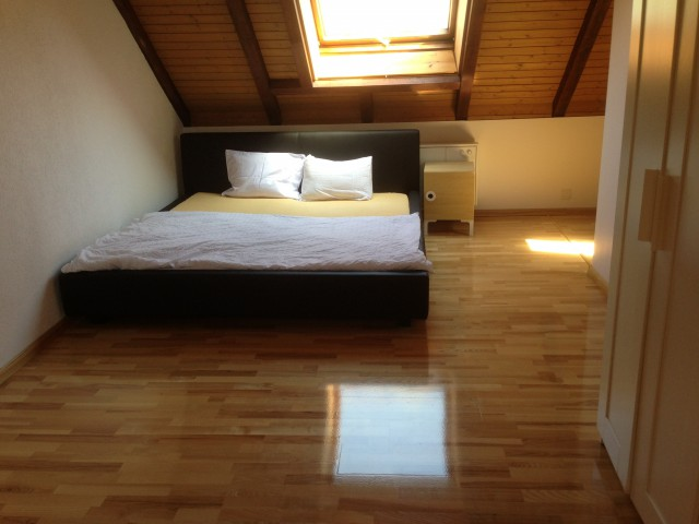Newly renovated: big House for rent 13828331