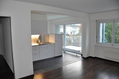 Appartement 2 1/2 pièces quartier des Tilleuls 13839841