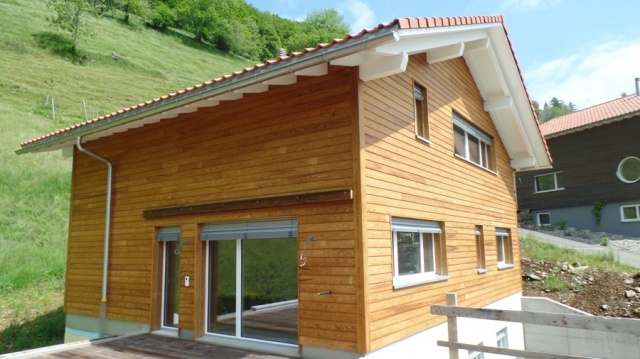 Neues Einfamilienhaus mit Blick auf Seelisbergersee und Berg 11376976