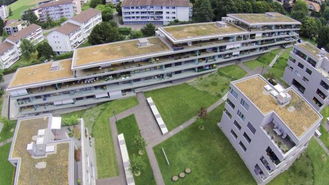 Grosszügige Wohnung im Grünen 11974451