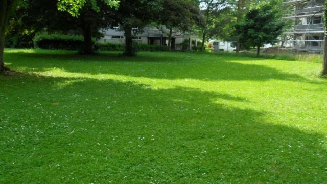 3-Zimmerwohnung mit Garten