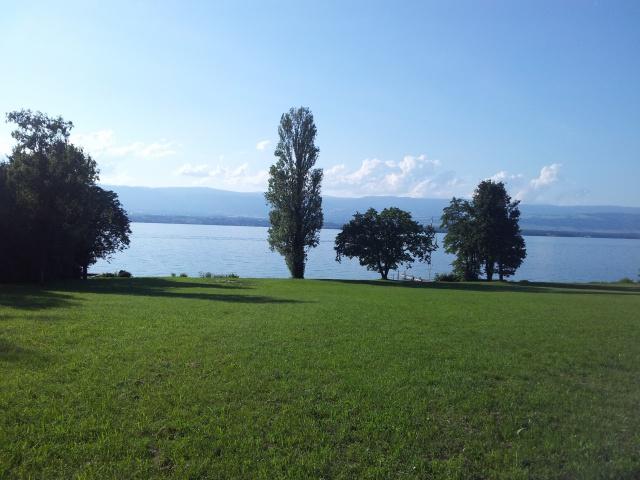10m Genève, villa pied dans l'eau 12437116