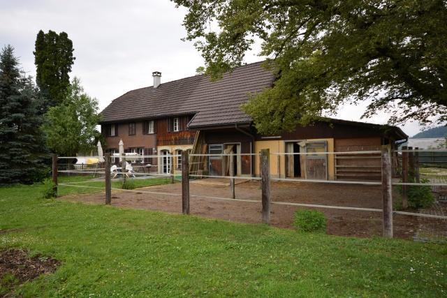 Wohnhaus mit Pferdestall und Weide zu vermieten ! 11375803