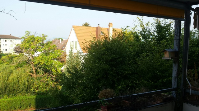 Schöne und helle Wohnung am Murtensee 11951910