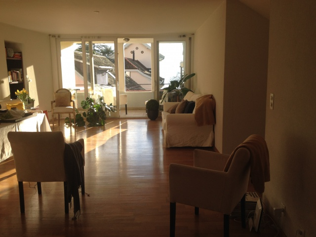 Sunny Lake View Apartment Lutry/Lausanne Furnished