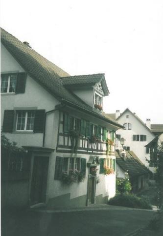 Zu vermieten im Stadtzentrum Wädenswil