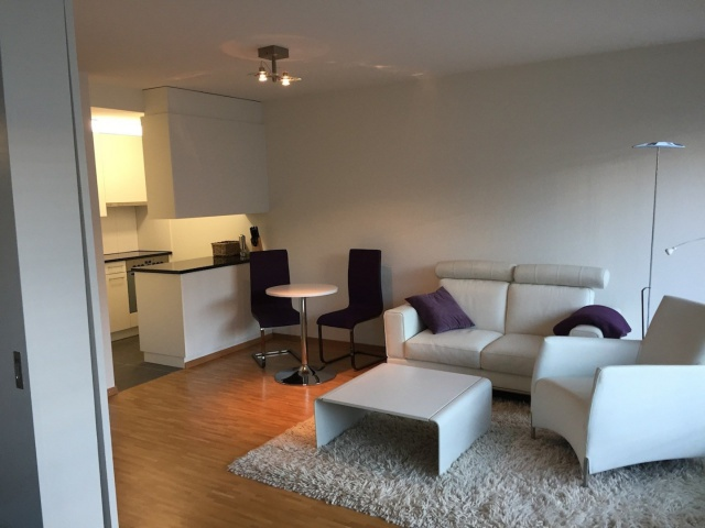 Modern furnished 2 room apartm. in preferential city area fo 13361426