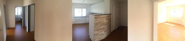 Neu renovirte Wohnung zu vermieten 11373815