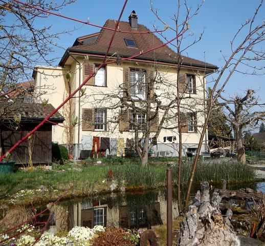 Schöne, renovierte Wohnung in älterem Zweifamilienhaus gross 12018876