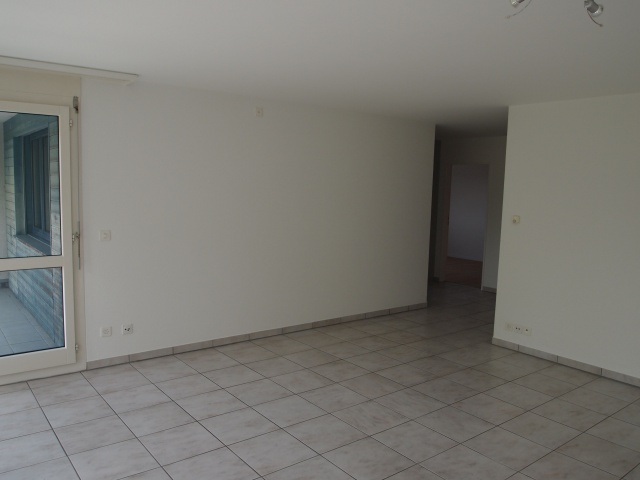 4.5 Zimmerwohnung zu vermieten 12376796