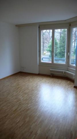 Schöne 3 1/2 Zimmerwohnung 11975686