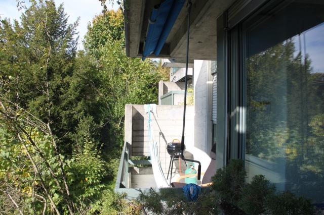 Schöne helle Wohnung in Höngg 12388761