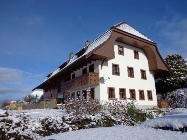 gemütliche Wohnung in Cordast 13791309