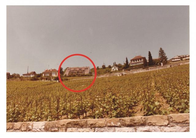 Meublé Grandvaux 125 m2 vue imprenable sur le vignoble UNESC 10884816
