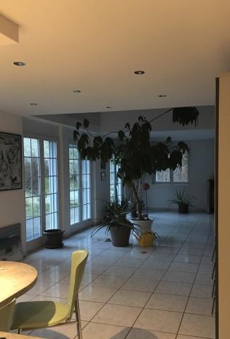 Schönes modernes Einfamilienhaus 13726857