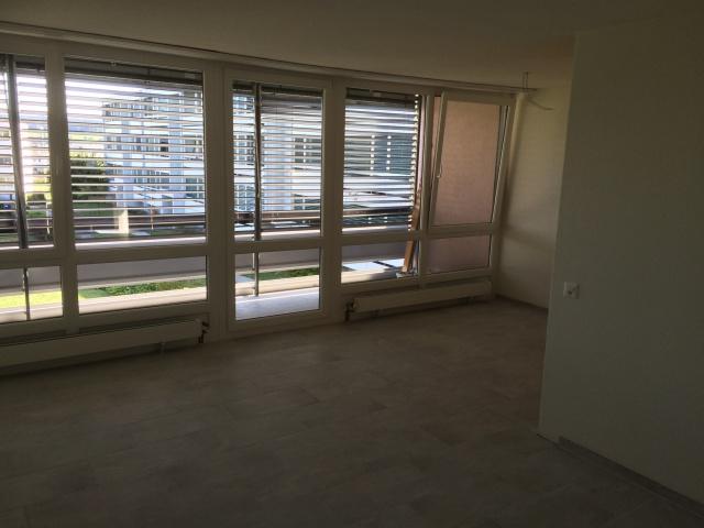 4 1/2-Zimmerwohnungen in Langendorf 11964465