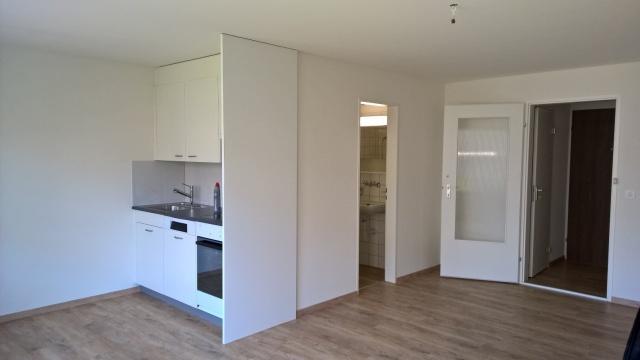 Schöne 1 1/2 Zimmerwohnung renoviert zu vermieten 10620674