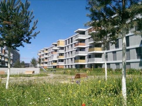 Wohnen im Erlenmatt Neubau 12339223