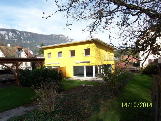 Neubau 4-Zimmer Einfamilienhaus