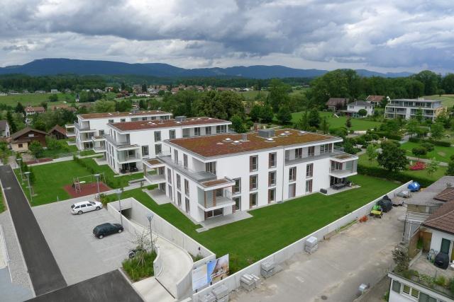 Modern - Ruhig - Sonnig 11617490