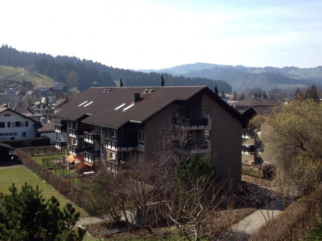 3.5-Zimmerwohnung in Langnau _ Parterre! 10959876