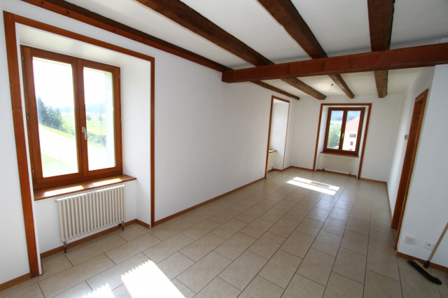 Grand appartement à rénover partiellement 11807881