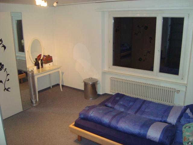 Schöne 3,5 - Zimmerwohnung in der Stadt Luzern 11608841