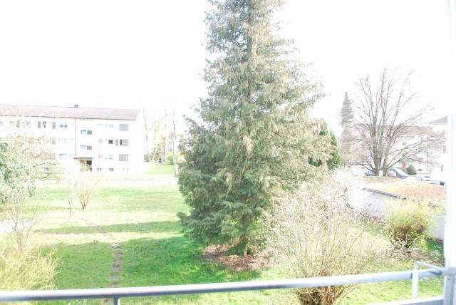 3 1/2-Zimmerwohnung in Buchs AG 13804870