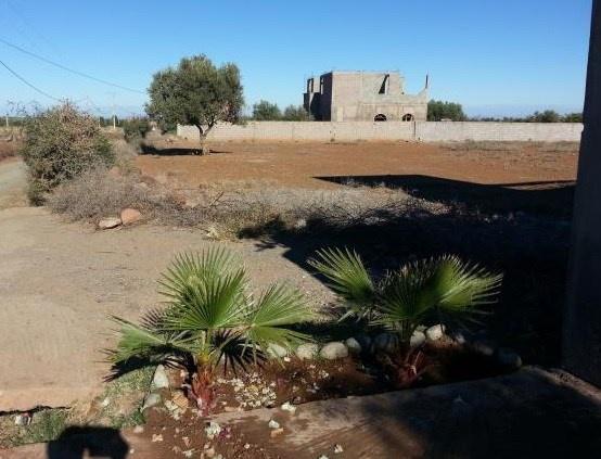Terrain pour villa près de Marrakech 13887385