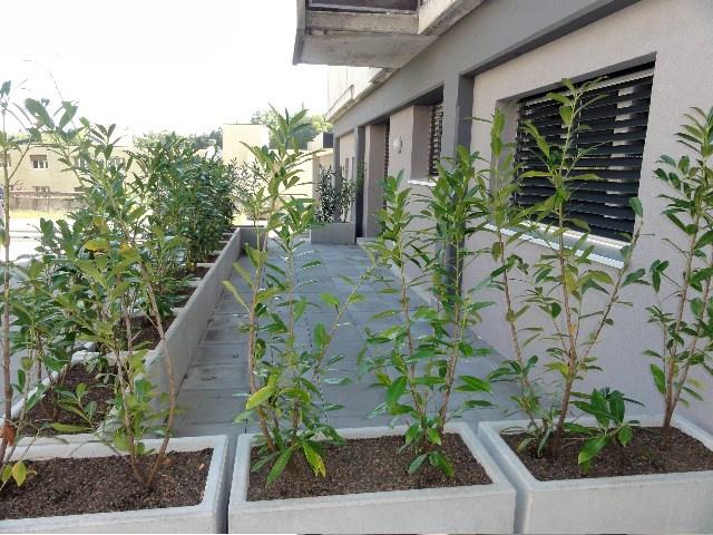 Appartement de 3.5 pièces avec terrasse