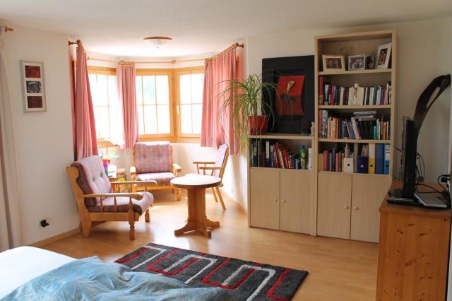 Grosses Studio-/Appartement an zentraler Lage