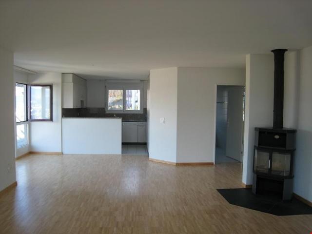 Schöne Wohnung mit Panoramablick auf Pilatus und Horw 13763948