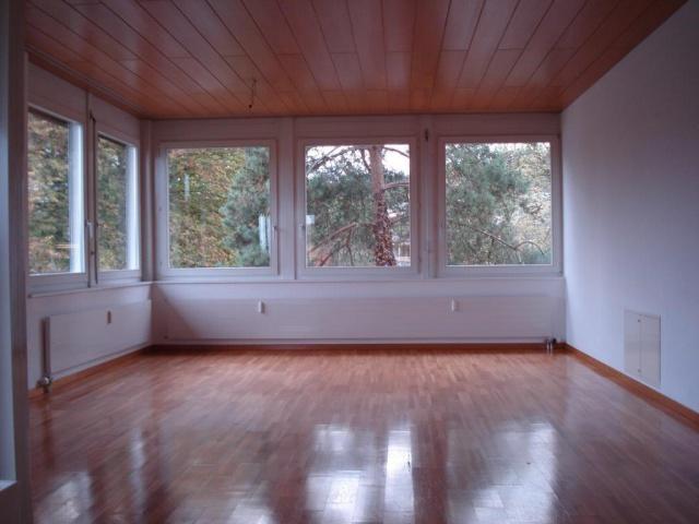 helle grosszügige Wohnung mit grossen Fensterfronten mit Par