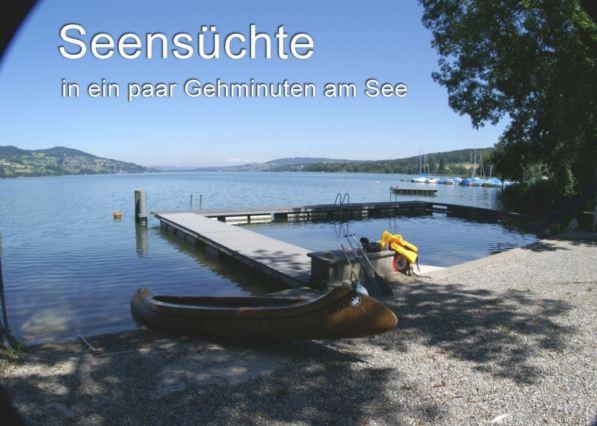 Traumhafte See- und Weitsicht, 4.5 Zi.Whg. grossz. Raumkonze