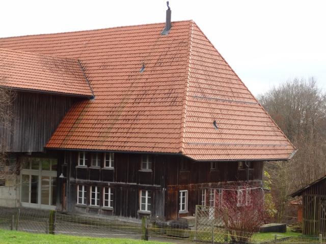6½ Zi-Bauernhaus-Wohnung