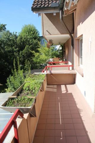 Schöne Wohnung in Wil an ruhiger Lage. 12077612