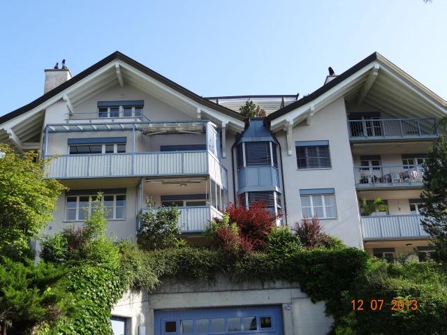 Schöne 4 1/2 Zimmer-Wohnung mit Gartensitzplazt Sicht in den 11298822