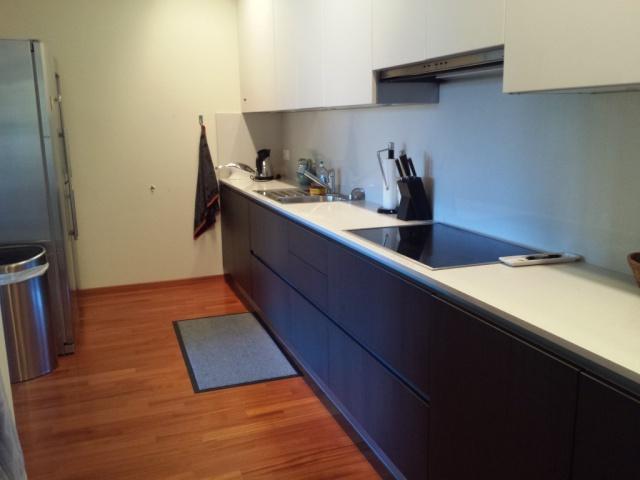 Stupendo appartamento ristrutturato a nuovo 10312512