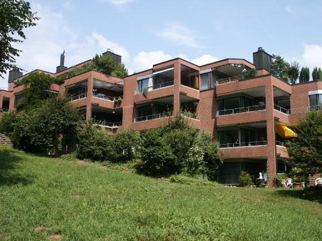 Renovierte, 3.5 Zi-Gartenwohnung 13840292