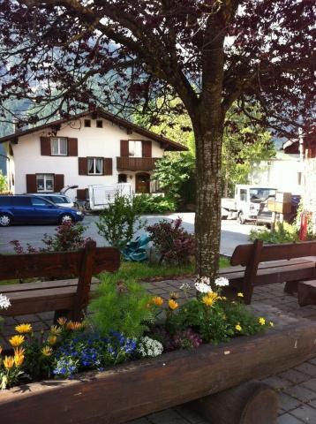 1 Zi Wohnung in Grindelwald; zentral, ruhig, sonnig 11636076